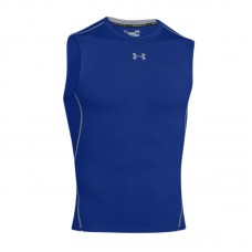UNDER ARMOUR HEATGEAR COMPRESSION SL SHIRT 400